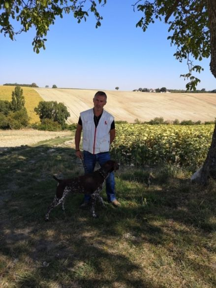 Actualités Pension canine à Mios en Gironde